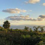 Remodeled Ocean View Home for Sale in Palos Verdes