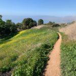 Palos Verdes Hiking Trails